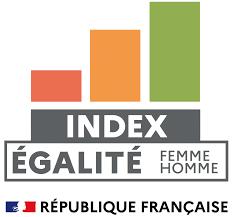 Index égalité femme homme
